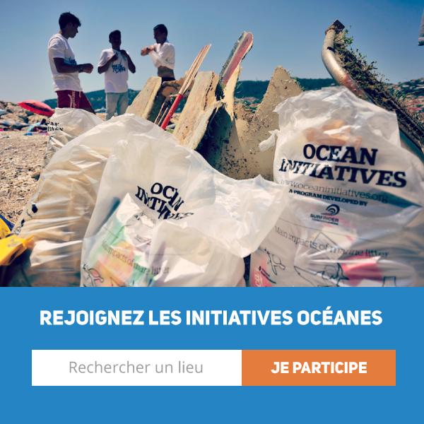 Photo du résultat d'un iO : des sacs poubelles pleins en avant et quelques bénévoles en arrière, sur une plage.